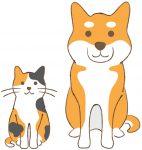 三毛猫と柴犬